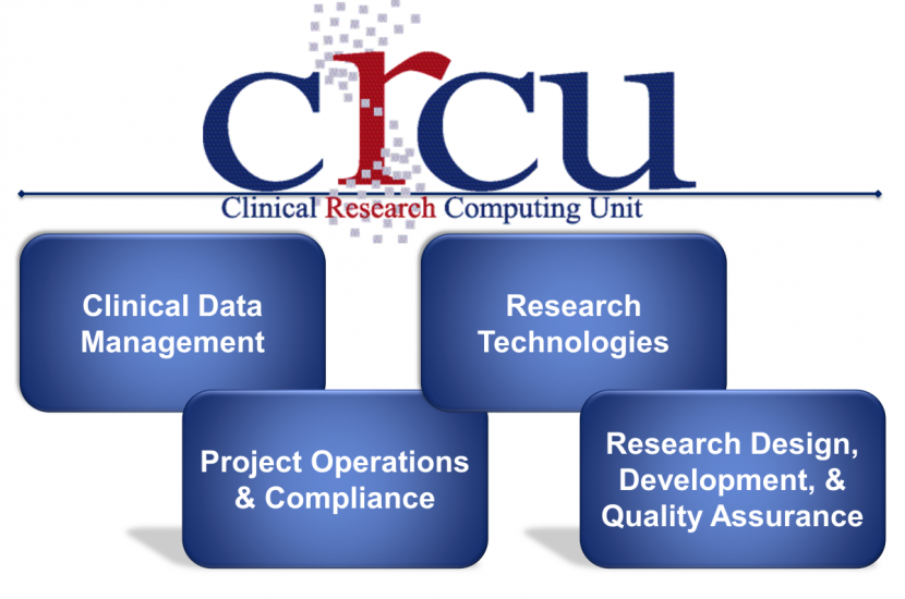 Clinic Research Computing Unit Divisions